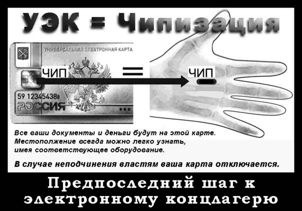 Паспорта россиян переводят в…