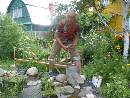 Сад своими руками фото любимая дача