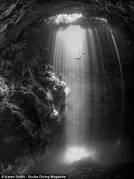 Победители конкурса подводной фотографии Through Your Lens