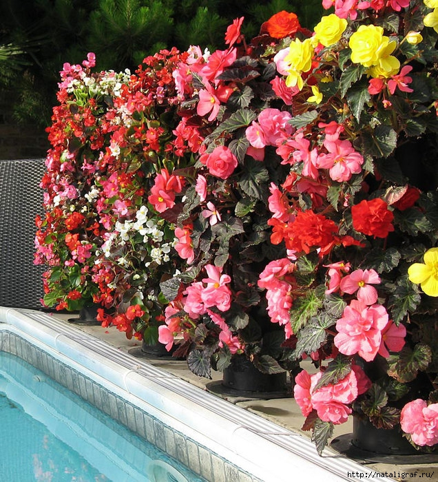 4045361_flowertowerfreestandingplanter3 (636x700, 440Kb)