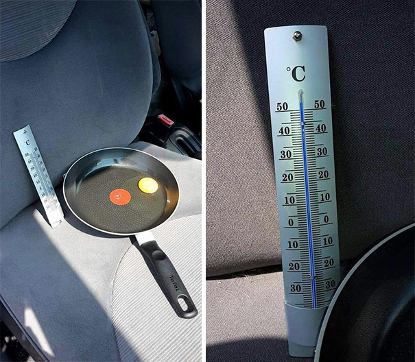 Guy Leaves Egg In Car During Hot Day To Show Why You Should Never Leave Your Dog There
