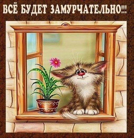 Всё будет заМУРчательно!!!))