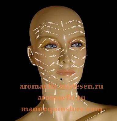 Массажные линии лица, шеи и декольте