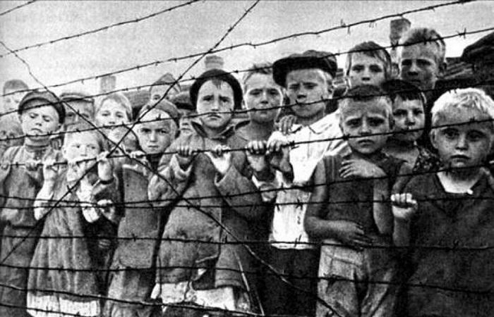 Маленькие узники Красного Берега