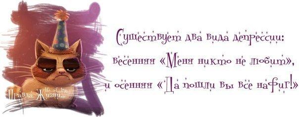 http://mtdata.ru/u18/photoC6C2/20419320575-0/original.jpg#20419320575