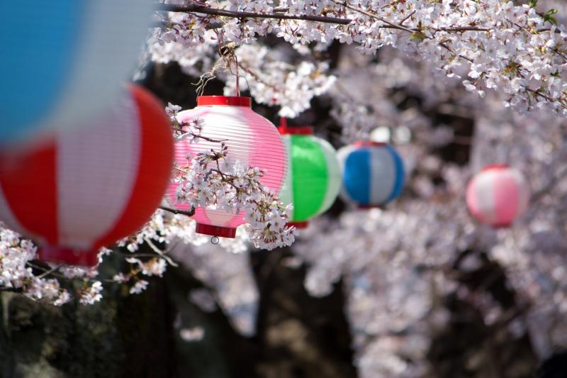 Бесплатная доставка diy алмаз живопись бриллиантового креста стежок комплект инкрустированные декоративная живопись алмазный вышивка романтический cherry1212040