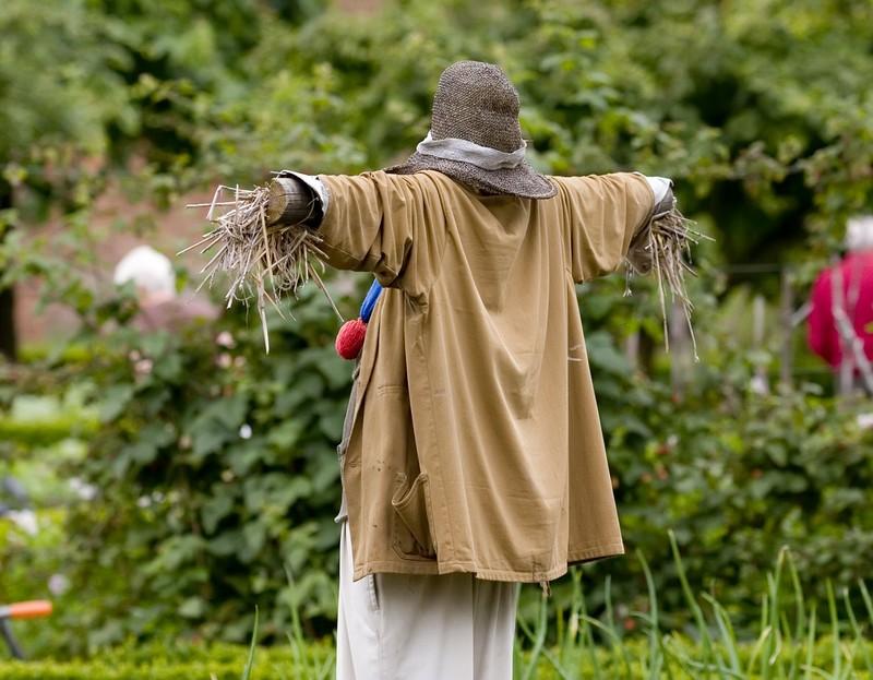 Огородное пугало: защитник урожая и украшение сада