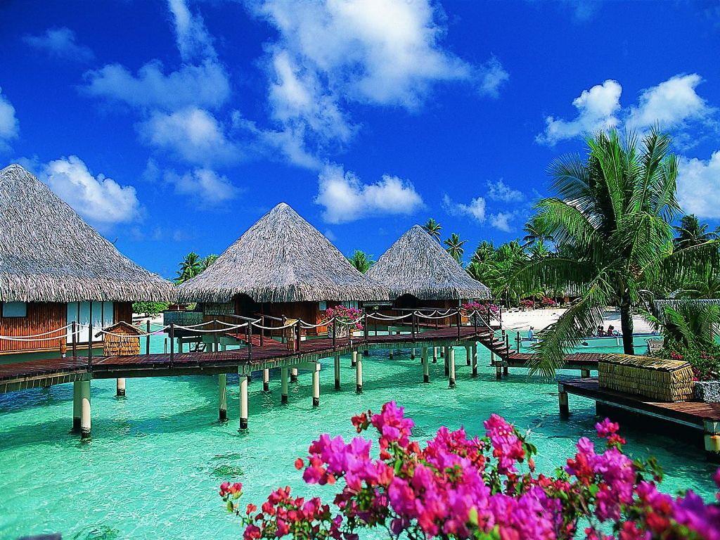 красивые фото острова