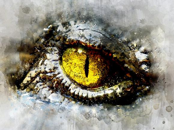 Иван Курилла. Мозг рептилии