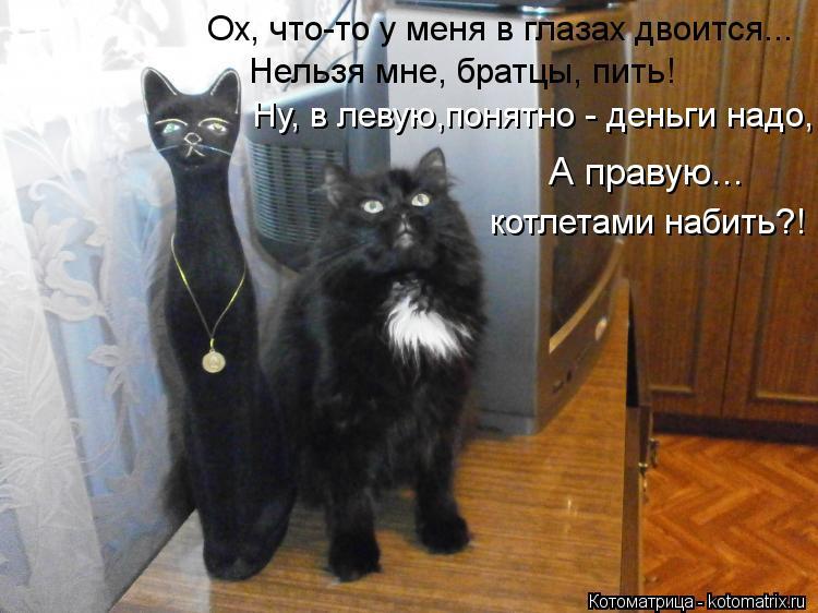 Котоматрица: Ох, что-то у меня в глазах двоится... Ну, в левую,понятно - деньги надо, Нельзя мне, братцы, пить! А правую... котлетами набить?!