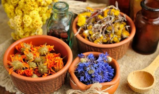 Пять полезных лекарственных растений