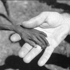 Каждый седьмой житель Земли голодает