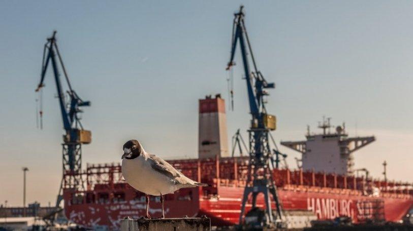 Российская компания преподнесла портам Прибалтики неприятный сюрприз
