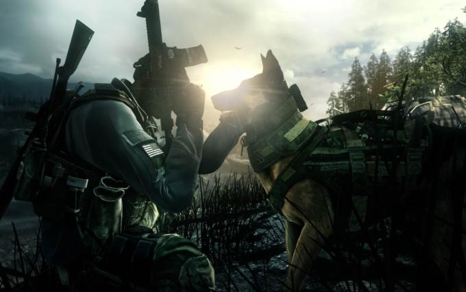 Activision подала жалобу на семейную компанию по уборке за животными
