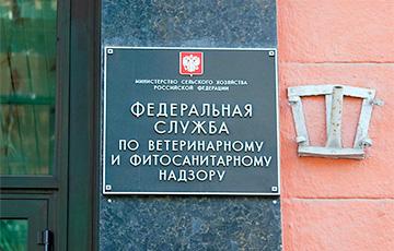 Россельхознадзор вызывал белорусских коллег на разговор