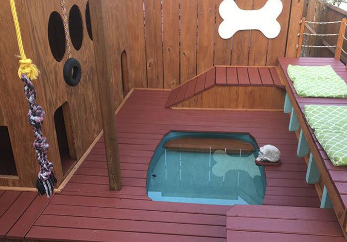 Несобачья жизнь: американец построил для своих четырех собак площадку для отдыха с бассейном