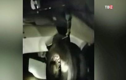 По факту инцидента с самолетом в Якутске возбуждено уголовное дело