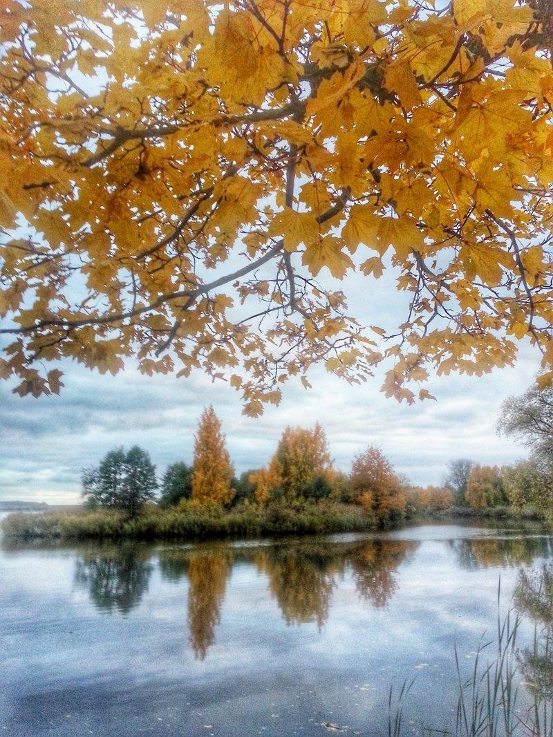 Осень-здесь много! времена года, природа, юрмала