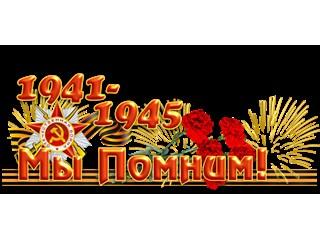 СССР сражался в войне не только с Германией. Вся Европа была заражена фашизмом и объединена под Гитлером