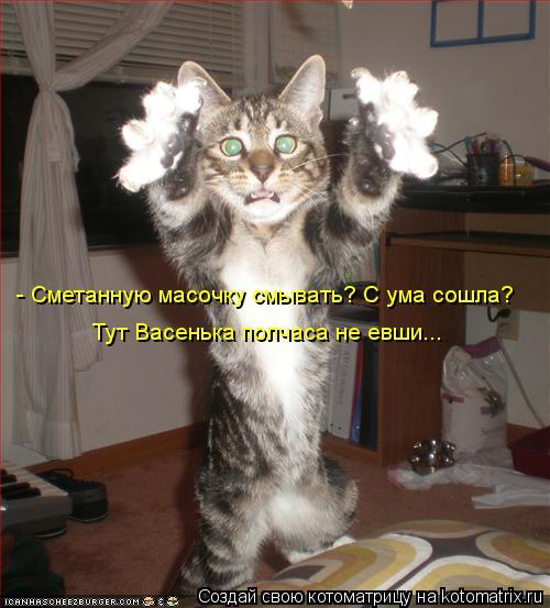Пятничная котоматрица! Сама хохотала до упаду)))