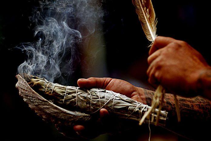 Советы шамана: Как с помощью трав улучшить собственную жизнь