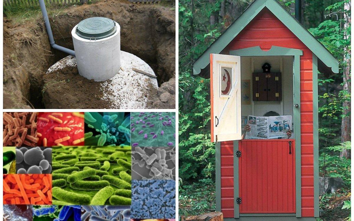 Как избавиться от запаха в дачном туалете и ускорить созревание компоста