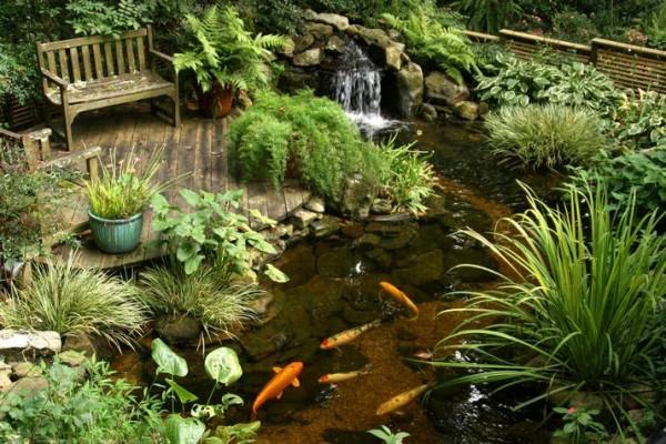 Сады на воде
