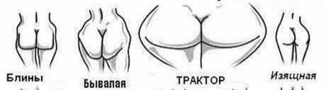фото классификации женских жоп