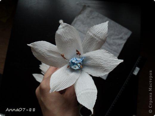 Мастер класс свит дизайн лилии