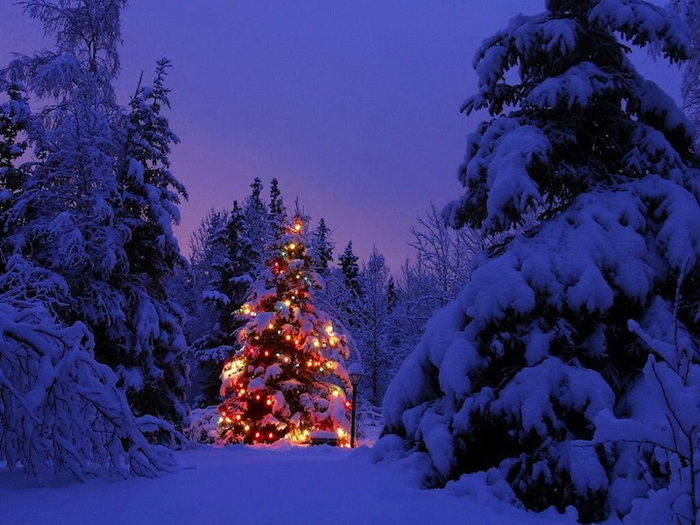 Атмосферные фотографии на тему Нового года