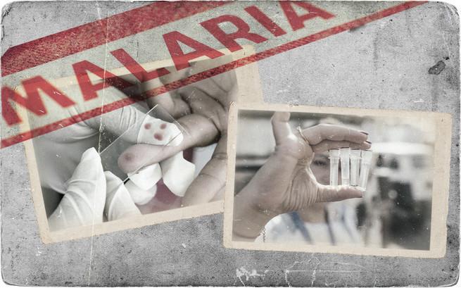 Как Советская власть боролась с малярией