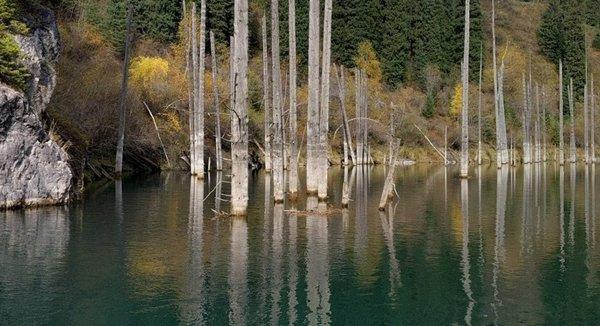 Лес, который 100 лет назад ушел под воду - уникальное озеро Казахстана