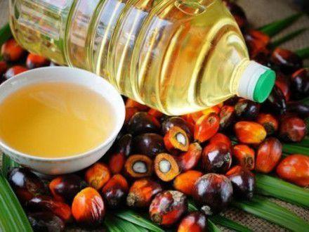Пальмовое масло: Горькие факты. Начиная детской смесью и заканчивая зубной пастой