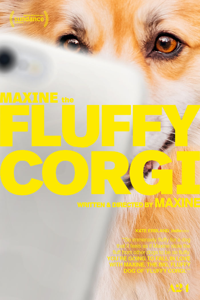 Couple Celebrate Their Favorite 2018 Movies By Photoshopping Their Fluffy Corgi Into Their Posters