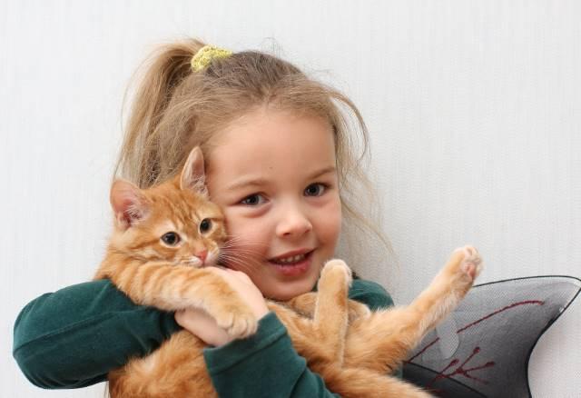 Между домашними животными и их хозяевами возможно существует духовная связь
