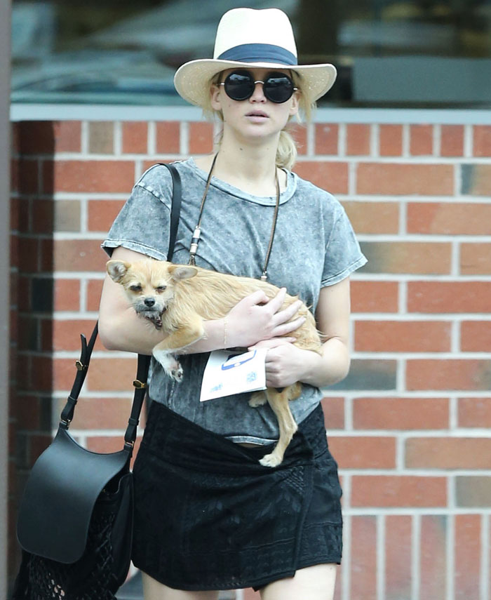Paparazzo Touches Jennifer Lawrence's Dog, And Her Rude Reaction Sparks Heated Discussions