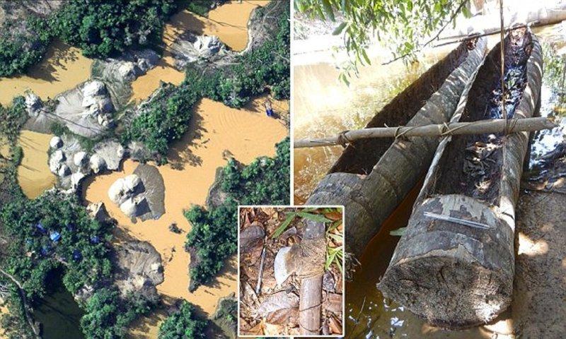 Власти Бразилии обнаружили дикое племя, никогда не встречавшееся с цивилизацией