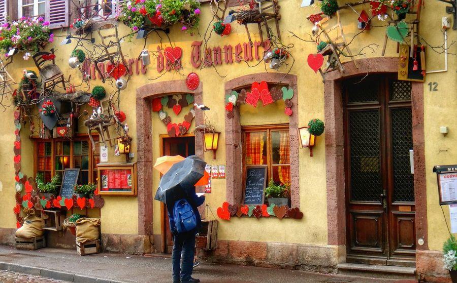 terraoko 2014 121788 6 Кольмар   самый очаровательный город во Франции.