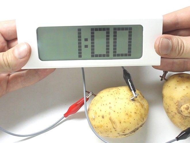 магические свойства картофеля