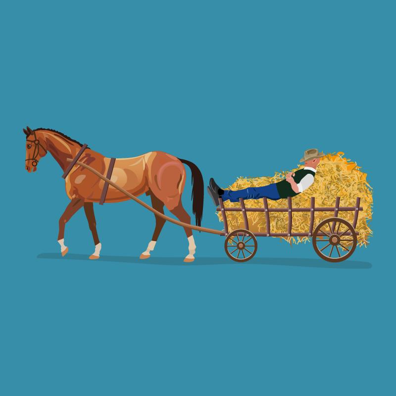 Анекдот про столкновение сердобольного шерифа истарого фермера