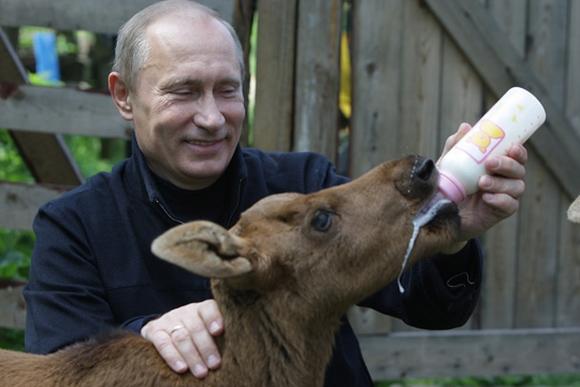 Путин возвращается к внутрен…