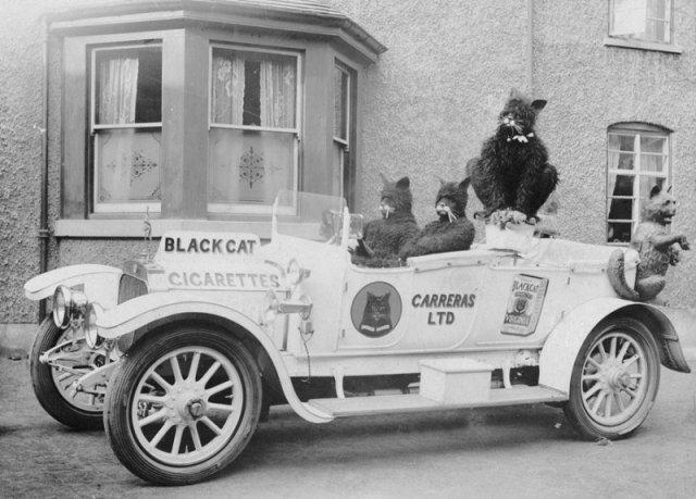 Реклама сигарет Black Cat, 1915 история, люди, мир, фото