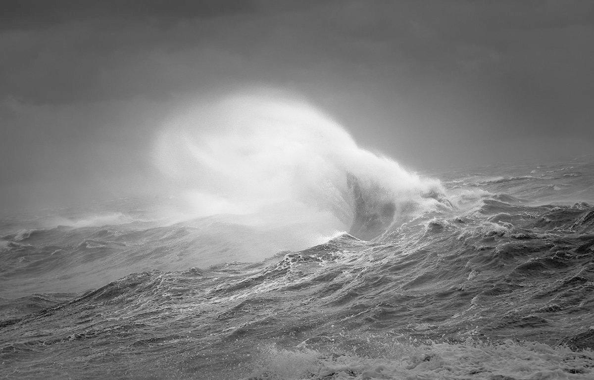 Рейчел Талибарт, победитель лучшие фото, лучшие фото года, монохром, фотографы, фотоконкурс, черно-белая, черно-белая фотография