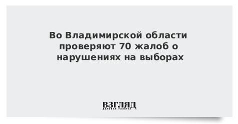 ЦИК рассказал о жалобах на нарушения в ходе второго тура выборов