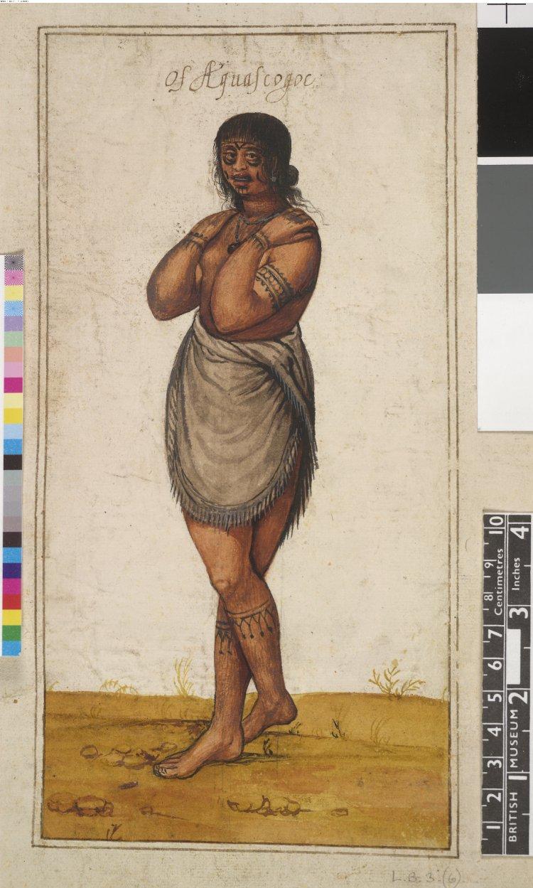 John White 1585 1593 Первые изображения коренных американцев