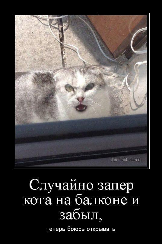 http://mtdata.ru/u18/photoF77A/20779287807-0/original.jpg#20779287807