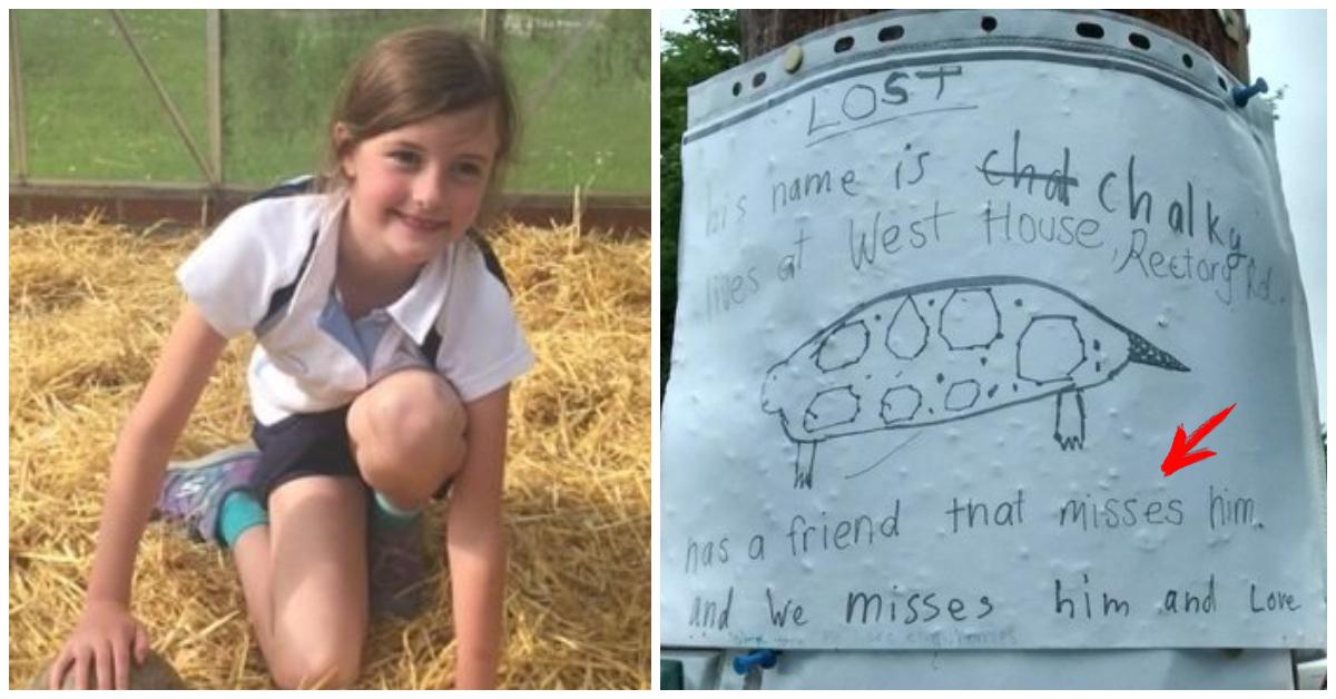 «Это сделал ребёнок!» Волонтер везла потеряшку в приют, как вдруг увидела на столбе странный плакат…