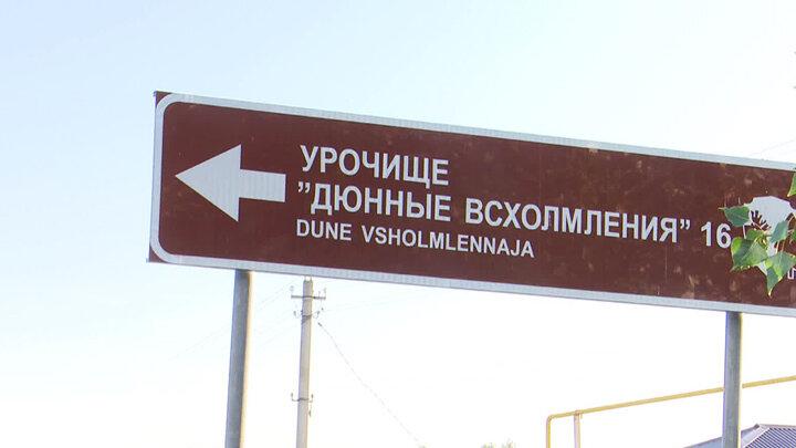 vestivrn.ru