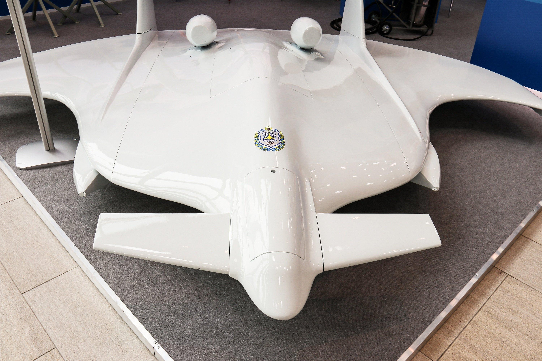 В России планируют создать высокоскоростной амфибийный флот