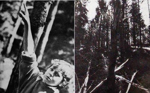 Волосатый монстр в белорусском пионерлагере в 1989 году